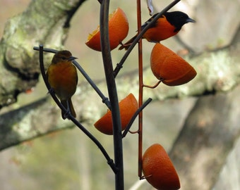 Oriole Feeder, Gardening, Feeders, Copper Art Vine Multiple Orange, Copper Bird Feeder, Fork Style