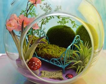 "Fairy Garden Terrarium Kit ~ 7"" Air Plant Terrarium Kit ~ Beautiful Fairy Bed with Moss ~ Fairy Garden Kits ~ Fairy Option ~ Magical ~ Gift"