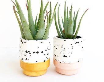Ink Spot Pots Ceramic Succulent Planters
