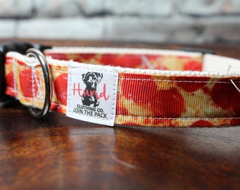 Dog collar with pizza