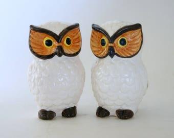 Vintage Owl Decor, Salt Pepper Shakers, Owl Kitchen Decor, Lego Ceramics, 1970s Owl Shakers