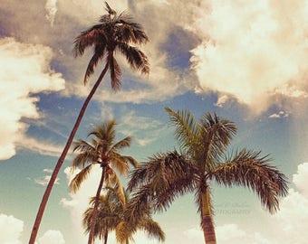 Palm Tree Wall Decor-Coastal Art-Florida Couds-Beach Art-Tropical Decor-Fine Art Photography-Horizontal Print-Retro Decor-Vintage Art Print