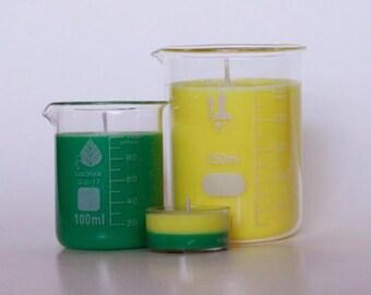 Mint Mojito Soy Candle - Beaker