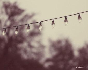 lights, nature, summer, dreamy, fine art photography