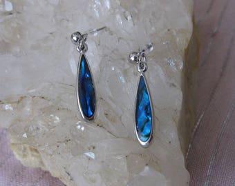Abalone Earrings, Paua Shell Earrings, Abalone Drop Earrings, Shell Earrings, Paua Shell Earrings, Paua Shell Drop Earrings, Abalone Drop