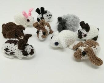Mini rabbit, small bunny soft toy, stuffy, Dutch, lop, mini lop Holland lop, English spot, English lop, mini rex, Havana, lionhead