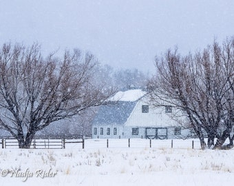 Winter Barn with Snow in Rural Northwest Colorado - Fine Art Nature Photography Print