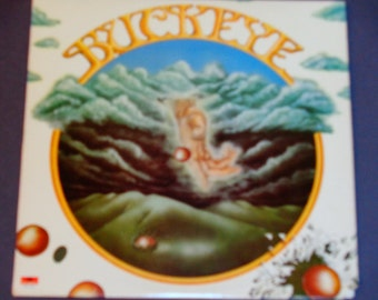 """Buckeye - """"Where Will Your Heart Take You"""" - """"Just the Way"""" - """"Perfect Day"""" - Pop Rock - Polydor 1979 - Vintage Vinyl LP Record Album"""