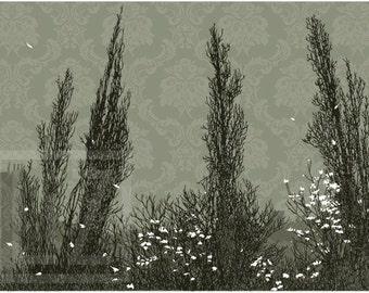 Cypress - screen print