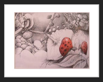 Table - Two ladybugs - microscopic view - pencil, watercolor and ink - two lady bugs