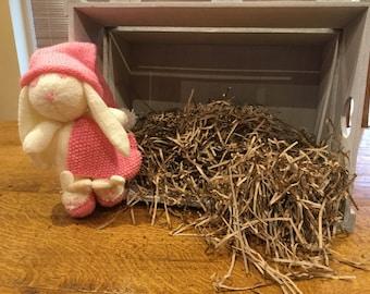 Winnie the sleepy bunny