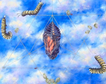 """Butterfly Growth Stages """"Journey"""" Sacred Geometry Artwork"""