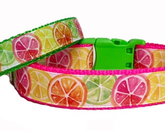 Citrus Fun - Dog Collar - Lemons - Limes - Neon - USA - Pet - Gift - Summer - Bbq - Holiday - Puppy - Handmade -