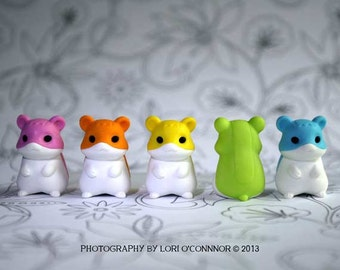 Rainbow Hamsters - Photograph - Various Sizes