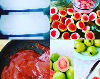 Cats Pure Authentic Made From Scratch Organic Real Guava Paste fruit based melt and pour soap base  Real Fruit Melt And Pour Natural Base