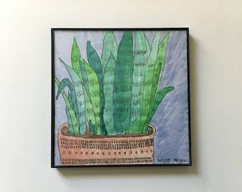 18/100: snake plant - original framed watercolor illustration