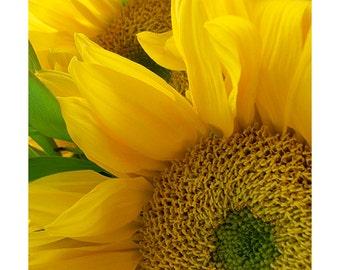 Yellow Sunflower Art,  Photography Print, Sunflower Photo, Neon Sunflower Art Print, Flower Wall Decor, Nursery Decor, Flower Art
