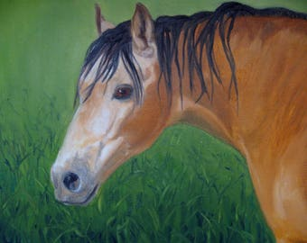 "Horse Oil Painting, Horse Portrait Buckskin Horse Art Original Horse Art Country Decor Equine Painting Horse Lover 8"" X 10"" Horse Art"