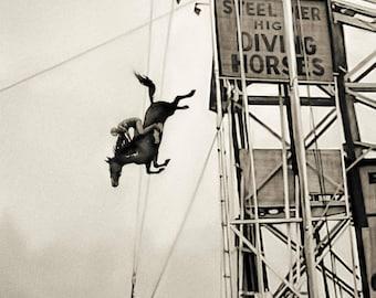 Diving horses vintage photo horse print horse art photography 1930s antique photograph boardwalk poster, PRINT