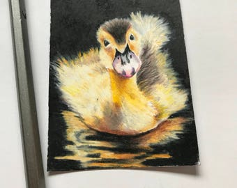 Little duckling original ACEO/ Artists trading card. Coloured pencil. Free UK delivery.