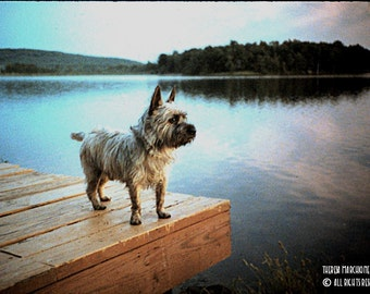 "Signed Original Photograph ""Sam On The Dock"" ∎ Print With Mat ∎ Or Print Only"