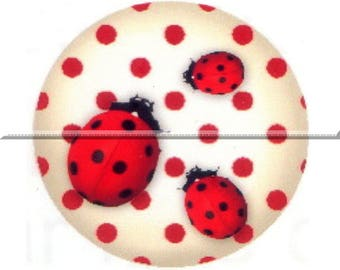 2 cabochons 25mm glass, lucky Ladybug