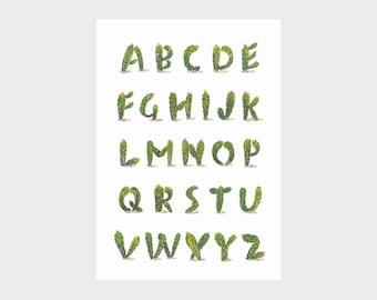 Cactus Alphabet Print