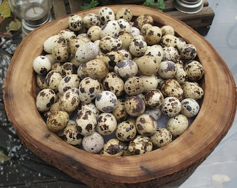 Ready to ship 100 Blown, Empty, Quail Eggs w/ 1 Hole. From Happy Free Range Quails :-)
