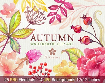 Autumn WATERCOLOR Clip Art. Fall nature garden foliage, leaves, flowers, berries, peony. 25 elements, 4 pastel backgrounds. Read about usage