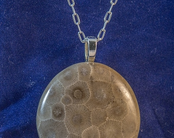 Petoskey Stone Necklace and Sterling Filled chain