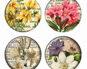Vintage Floral sur fond de Page de dictionnaire fleurs aimants ou Pinback Buttons ou Flatback médaillons Set de 4