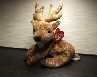 Buck Reindeer Wildlife Woods