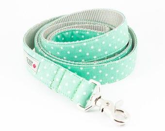 Mint Dots Dog Leash