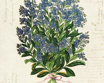 Vintage Botanical Flower on French Ephemera Print 8x10 P39