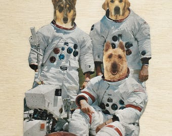 Astronauts, dogs, space, NASA, dog art, collage, funny dogs, soace dogs