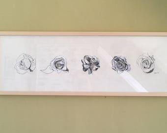 Studies of a rose, Original, 60 x 20cm
