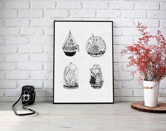 Terrarium Illustration Print