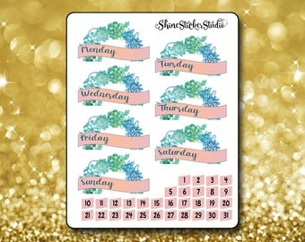 Sweet Succulents Date Cover Stickers - Planner Stickers Erin Condren Life ECLP Stickers Happy Planner Succulent Stickers