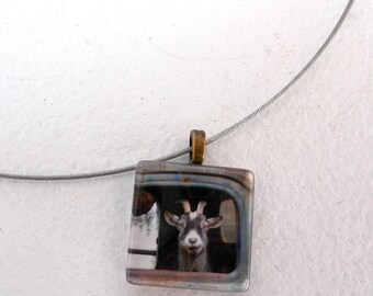 Truck Driving Goat Pendant Necklace