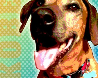 Custom Pet Portrait  Pop Art Personalized - 11 x 14""
