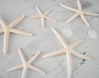 Stocking Stuffer- White Starfish - Sand Dollars - Beach Decor - Starfish Decor - Decorative Starfish - beach wedding - hostess gift