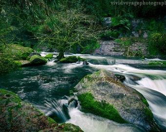 River Print, Landscape Photography, Forest Print, Nature Photography, River Rocks, Mossy Rock, Oregon Photo, Landscape Print