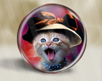 Cat In A Hat Series Magnet, Pocket Mirror, or Pinback Button D004