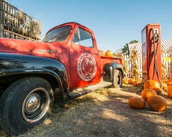 Russell Orchards 1954 Ford F100 Vintage Truck with Pumpkins, Ipswich, MA