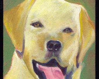 original dog art notecards by sheilatrowbridge