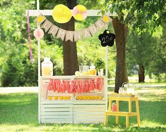 Lemonade Party Decor, Lemonade Banner, Lemonade Stand Decoration, Summer Lemonade Sign, Lemon Decor, Lemonade Party Supplies, B611