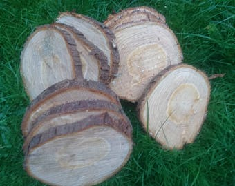 10 slice of Yew tree table decor wedding decoration, craft, woodworking
