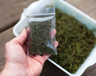 Loose Red Cedar leaves-loose incense for meditation and healing
