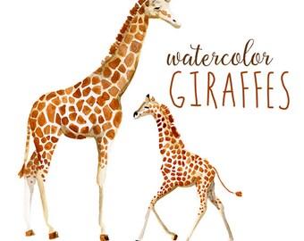 Watercolor Giraffes, Zoo Animals Watercolor Giraffe Clip Art, Africa Clipart, African Wild Animal Clip Art, Savannah Clipart, baby giraffe