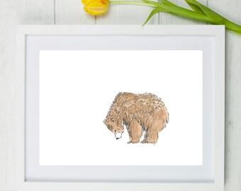 Bear, bear print, grizzly bear, watercolour bear, bear watercolour, bear painting, Scruffy bear, grizzly bear painting, nursery art